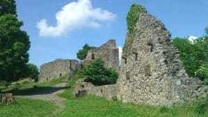 Burgruine Löwenburg