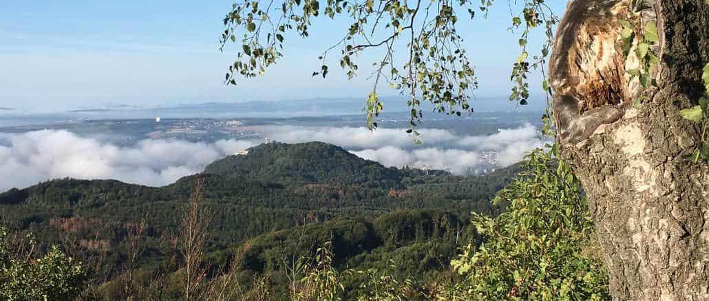 Blick vom Ölberg, Siebengebirge