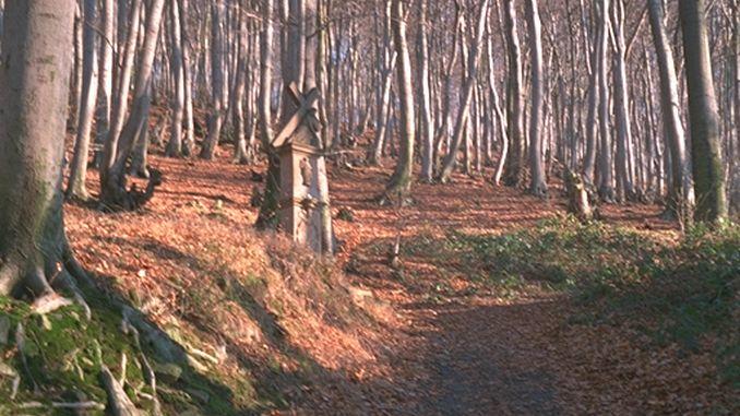 Petersberger Bittweg, Königswinter
