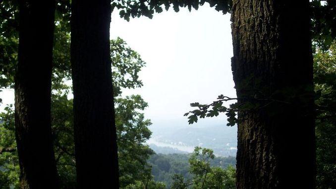 Geisberg, Siebengebirge