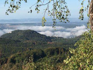 Drachenfels vom Ölberg, Siebengebirge