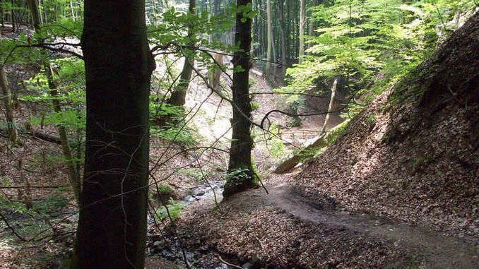 Tretschbachtal, Siebengebirge