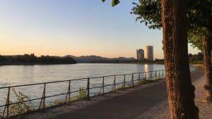 Rheinufer Bonn, früh am Morgen