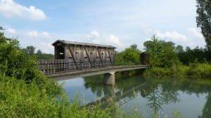 Natuschutzgebiet Insel Rohrschollen