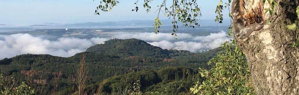 Siebengebirge, Blick vom Ölberg auf den Drachenfels
